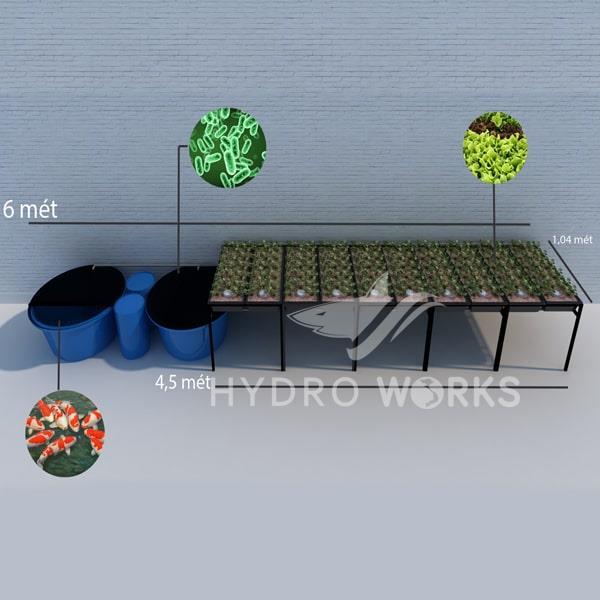 Trồng Rau Thủy Canh Kết Hợp Nuôi Cá Aquaponics (Hệ 10 Bồn Lớn)