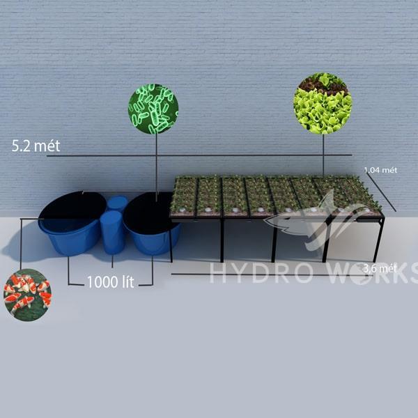 Mô Hình Trồng Rau Thủy Canh Aquaponics 8 Bồn Rau Lớn